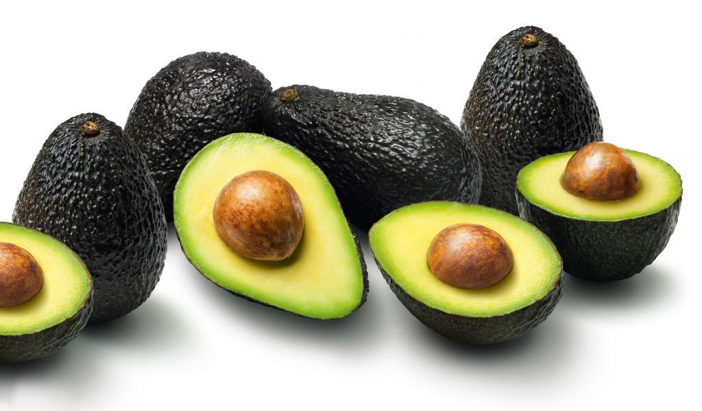 Выращивание авокадо в домашних условиях. Уход за домашним авокадо.
