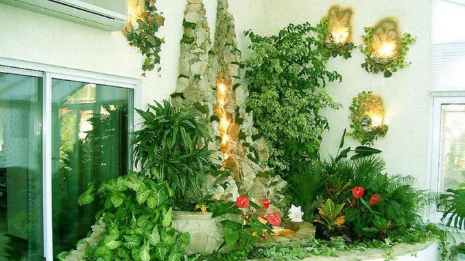 Вьющийся комнатный цветок с белыми цветами