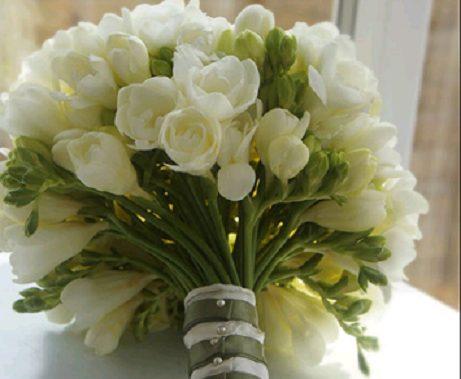 Фрезия Дабл Вайт (76239): купить луковицы почтой в России