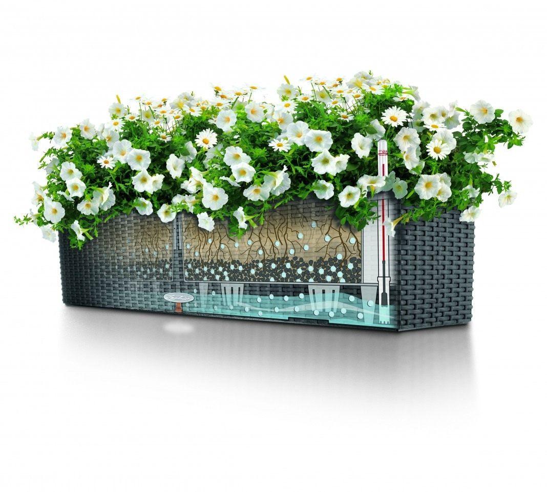 Устройство для полива цветов во время отпуска