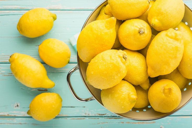 Выращивание лимона в домашних условиях, уход за комнатным растением, родина цветка