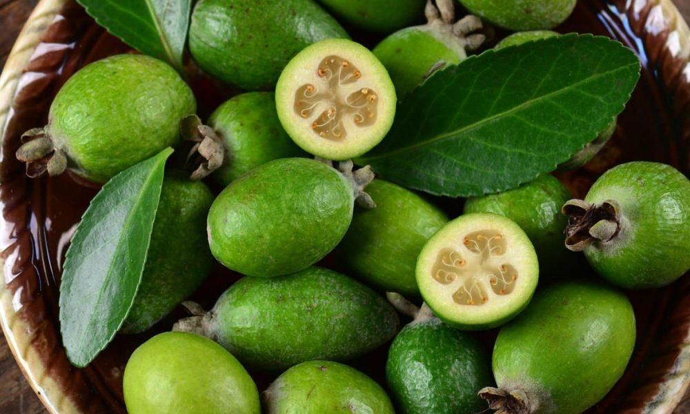 Фейхоа что это такое: фрукт или ягода, как выглядит, фото плодов
